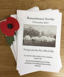 Flyers and a poppy