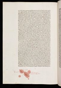 "An early printed book bearing an ink blot and the marginal inscription, ""I stupidly made this blot on the first of December 1482"" (Inc.1.B.3.1b[1330] )"