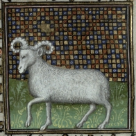 Aries from Trin MS B.11.31.