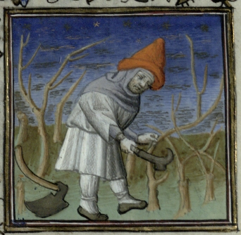 Pruning trees for March - Trin MS B.11.31