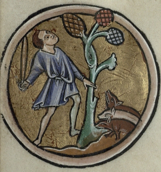 A man beats a tree while three little pigs await a meal below. (Trin MS B.11.4, f.v verso)