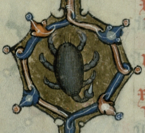 Scorpio with a needle-like sting. (Trin MS B.11.7, f.5v)