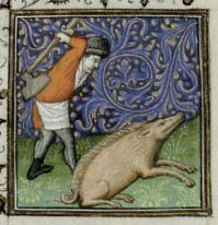 December: a bad month in which to be a pig. Trin MS B.11.31.