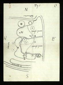 Wittgenstein's Garden Plan