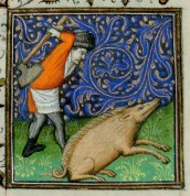 Day 17_Killing a Hog from a Calendar in a 13th-century Book of Hours (B.11.31, f.12r)
