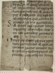 B.1.30A: Fragments from a Pontifical