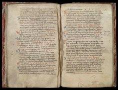 R.14.50: Passionarius Galeni