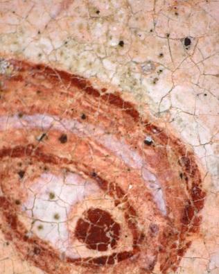 Trinity B.16.3_star1v_Gregory's PR eye with wax stain_70x