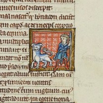 The bonnacon is a mythical, comic creation. It is depicted with a bull's head and horns that curl inwards, rendering them useless for defence. To defeat hunters the bonnacon instead attacks with potent excrement (f.96r).